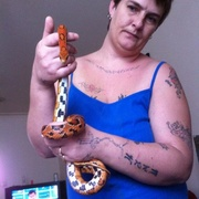 selling my female corn snake due to having no time for her