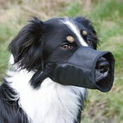 Buy Trixie Dog Muzzle For Safety at Petgenie Online Shop