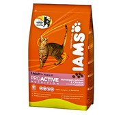 Buy IAMS Cat Adult Salmon Chicken food at Petgenie.in
