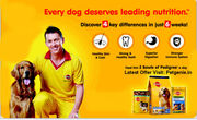 Enjoy Diwali Offer on Pet Foods And Accessories at Petgenie