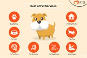 Pet Grooming,  Dog Walking,  Pet Store in Pune