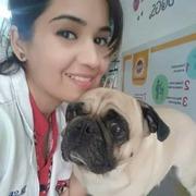 Best Pet Clinic in Gurgaon
