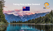 Taking Pets to New Zealand